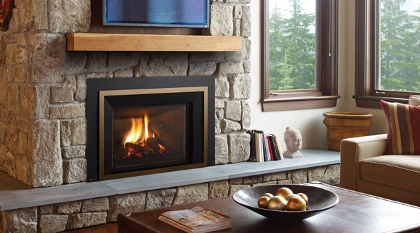 LRI6E Regency Fireplace Insert